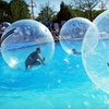 Up to 52% Off Fun-Park Package in Golden