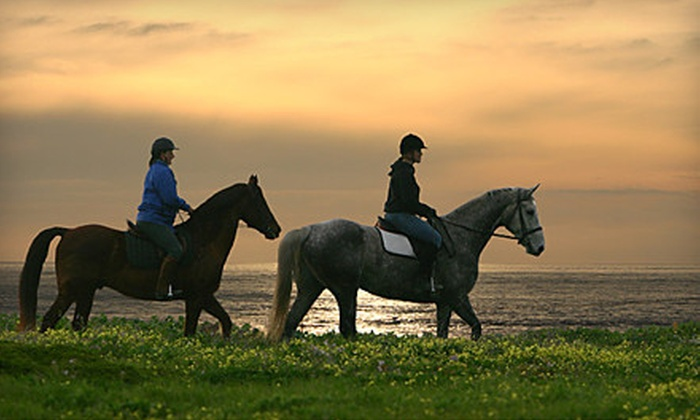 Blue Moons Riding School - Half Moon Bay: Two-Hour Horse Riding Lesson and Drinks for Two or Four at Blue Moons Riding School in Half Moon Bay (Up to 67% Off)