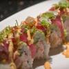 Half Off at Tuna Town Sushi Bar and Teppan Yaki Grill