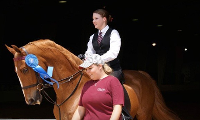 Twin Lakes Stable - Huntsville: Private Horse-Riding Lessons at Twin Lakes Stable in Moulton (Up to 78% Off). Three Options Available.