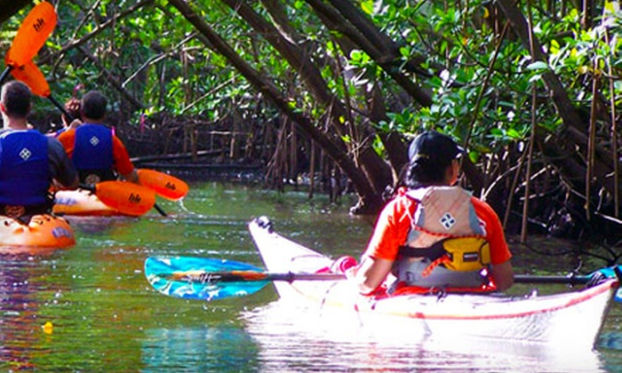 Visit Palm Beach - Palm Beach Shores: Peanut Island Kayak Tour for Two or Four from Visit Palm Beach (Up to $61% Off)