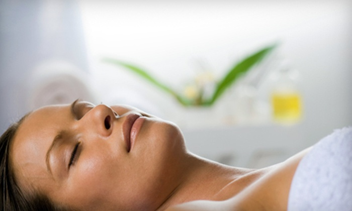North Florida Academy - Lakeside: One, Four, or Six Microdermabrasion Treatments at North Florida Academy in Orange Park (Up to 63% Off)