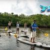 Half Off Eco Paddle Tour