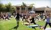 Metta Yoga - Multiple Locations: 5 or 10 Yoga Classes at Metta Yoga (Up to 61% Off)