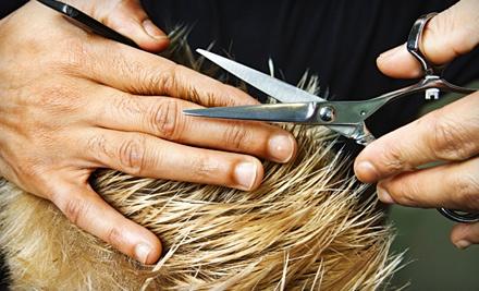 Shampoo, Haircut, and Style (a $25 value) - Studio 106 Hair Design in Hartford