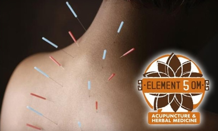 Element 5 OM - Greenway/ Upper Kirby: $35 for a One-Hour Acupuncture Session at Element 5 OM ($75 Value)