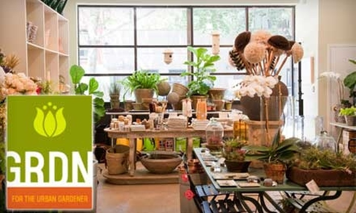 GRDN - Boerum Hill: $20 for $40 Worth of Plants, Pottery, and More at GRDN in Brooklyn
