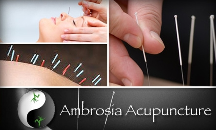 Ambrosia Acupuncture - Parker: $30 for a 60-Minute Acupuncture Consult and Treatment at Ambrosia Acupuncture ($120 Value)