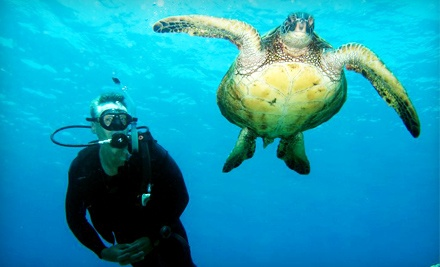 Open-Water Scuba-Certification Trip Package (up to a $528 total value) - The Dive Shop in Tucson