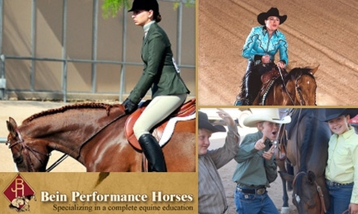 Bein Performance Horses - Tonto: $27 for a 90-Minute Riding Lesson from Bein Performance Horses ($55 Value)