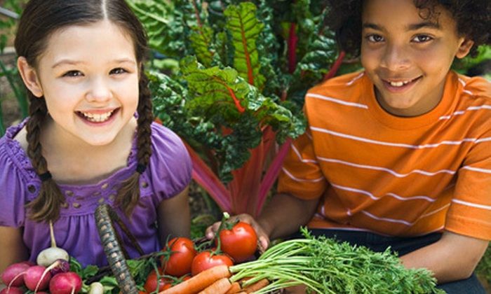 The Cooking School at Irwin Street - The Cooking School at Irwin Street: Intro, After-School, or Summer-Camp Cooking Classes for Kids at The Cooking School at Irwin Street (Up to 58% Off)