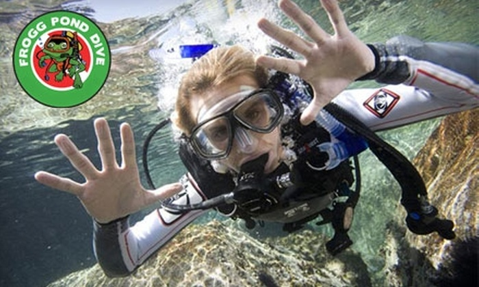 Frogg Pond Dive Shop - Highland Park: $34 for a Discover Scuba, Snorkeling, or Dive-Refresher Course at Frogg Pond Dive in Highland Park ($69 Value)