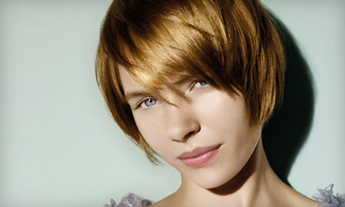 Aveda Willo - Multiple Locations: Haircut Package with Shampoo and Blow-Dry or $35 for $70 Worth of Salon and Spa Services at Aveda Willo