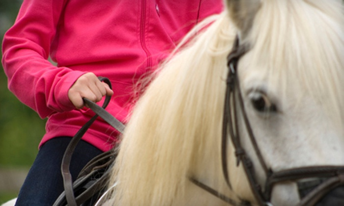 Bellaire Farms - Milton: Two or Six Private Indoor or Outdoor Horseback-Riding Lessons at Bellaire Farms in Milton (Up to 56% Off)