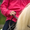 Up to 56% Off Indoor Horseback-Riding Lessons