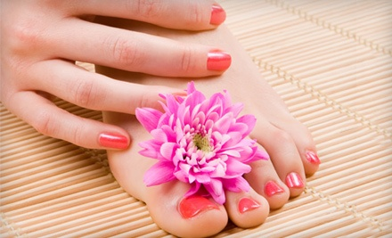 Regular Pedicure and Spa Manicure with Exfoliation, Aromatherapy, Hand-and-Arm Massage, and Polish (a $65 value) - Salon Du Soleil Medi-Spa in North Redington Beach