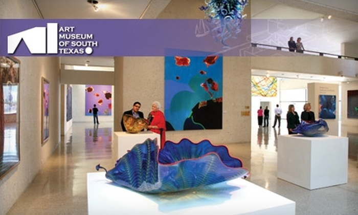 Art Museum of South Texas - Central City: One-Year Membership to the Art Museum of South Texas. Choose Between Two Options.