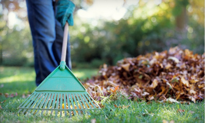 Scotland Yards - West Omaha: Fall Lawn Cleanup or Sprinkler Winterization from Scotland Yards