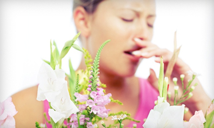 Clear Allergy Immunology Laser Center - Plano: $99 for Pollen, Pet, and Dust Allergy Testing at Clear Allergy Immunology Laser Center ($350 Value)