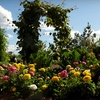 $8 for Two Tickets to Red Butte Garden
