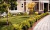 Premier Lawn Maintenance, LLC: One, Three, or Six Lawn-Maintenance Visits for 6,000 Square Feet of Lawn from Premier Lawn Maintenance (Up to 55% Off)