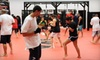 American Kickboxing Academy San Jose - Multiple Locations: 5 or 10 Martial-Arts Classes at American Kickboxing Academy (Up to 86% Off)
