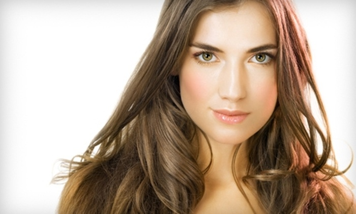 Salon Diva - Lawson Heights: $17 for Haircut and Style (Up to $35 Value) or $50 for $100 Toward Cut and Colour Services at Salon Diva