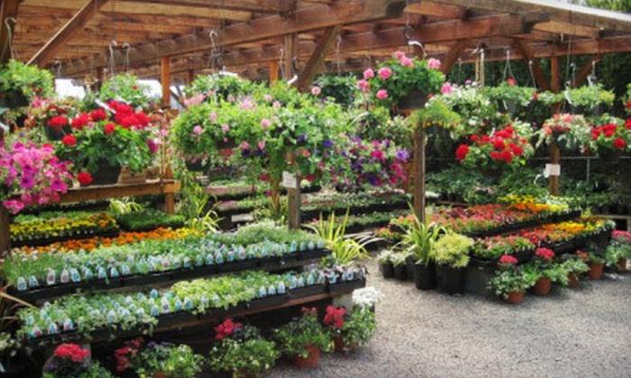 Loen Nursery Garden Center