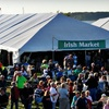 Up to 63% Off Irish Music Fest Tickets in Muskegon