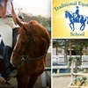 57% Off Horse-Riding Lesson
