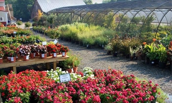 Winesett Nursery - Virginia Beach: $15 for $30 Worth of Plants and Gardening Accessories at Winesett Nursery