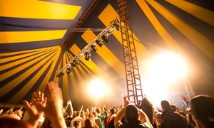 BURYFields: One Adult Ticket to Buryfields Festival, The Bury, 17 - 18 June (Up to 47% Off)