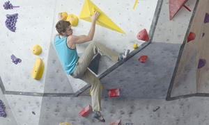 Aventurex: Bouldering with Optional Equipment for 2 Adults or 1 Family with Aventurex (Up to 59% Off)