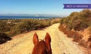 OFFICINA EQUESTRE: Passeggiata romantica a cavallo di coppia con briefing iniziale all'Officina Equestre (sconto 79%)