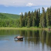 Up to 64% Off Cabin Stay and Boat Rental at Gold Mine Camp
