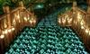 Luces de jardín fluorescentes