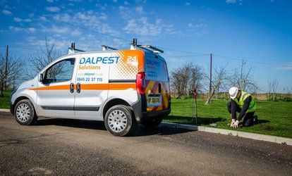 image for Flea or Bed Bug Control Treatment from DALPEST Solutions