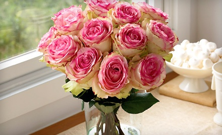$40 Groupon for Eco-Friendly Flowers, Plants, Gourmet Treats, and Gifts  - Organic Bouquet in
