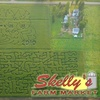 Skelly's Farm Market - Rock: $3 for One Admission to Two Corn Mazes at Skelly's Farm Market ($6 Value)