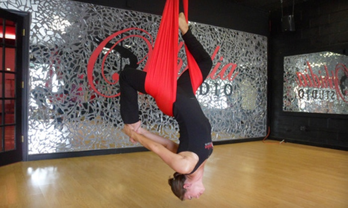 Ophidia Studio - Multiple Locations: $35 for Five Aerial-Yoga Classes at Ophidia Studio ($70 Value)