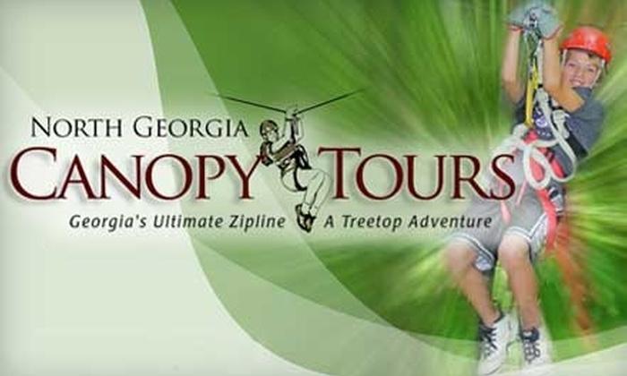 North Georgia Canopy Tours - Lula: $69 for a Treetop Premium Adventure Tour from North Georgia Canopy Tours ($139 Value)