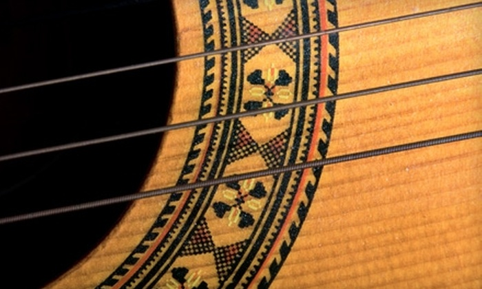 Vintage Guitars International - Lake Oswego: $50 for Three Guitar Lessons and $10 Store Credit at Vintage Guitars International in Lake Oswego ($100 Value)