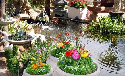 $50 Groupon for Home and Gardening Merchandise - The Green Goddess in Phoenix