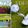 Up to 52% Off Golf at Ballymeade