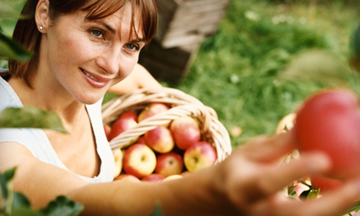 Mackintosh Fruit Farm - Berryville: Apple Picking for Two or One Pumpkin and Corn Maze for Two   at Mackintosh Fruit Farms in Berryville