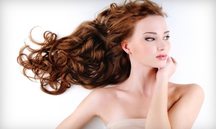 Fringe Salon - Chesapeake: $65 for Partial Highlight or Color, Deep Conditioner, Haircut and Style (Up to a $135 Value)