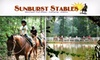 Sunburst Stables- DUPE - Atlanta: $20 for a Lesson and Trail Ride at Sunburst Stables ($48 Value)