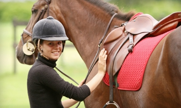 West Equestrian Ranch - Sand Springs: Horseback-Riding Lessons at West Equestrian Ranch in Sand Springs. Two Options Available.
