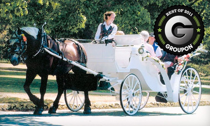 Black Beauty Line - James Bay: $45 for a 30-Minute Carriage Tour for Up to Six People from Black Beauty Line ($90 Value)