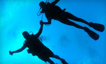 Sea Stallion Scuba Outfitters  - Sea Stallion Scuba Outfitters in Lake Forest